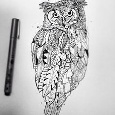 Owl. I love the varied feathers