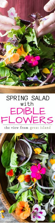 Spring Salad with Edible Flowers ~ this simple side dish is spring in a bowl ~ I'll show you how to identify, source, and use edible flowers to make this celebratory salad for weddings, showers, holidays, or any spring gathering. | appetizer | healthy | gluten free | paleo | Whole 30 |
