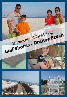 Homeschool Field Trip - Gulf Shores / Orange Beach, Alabama - TheHomeschoolScientist.com