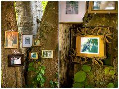 Familienfotos-an-die-Wand-ideen-baum-garten