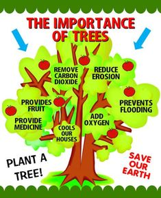 importance of trees essay Essays on importance of trees for kids Deforestation Poster, Importance Of Trees, Importance Of Agriculture, Earth Day Posters, Trees For Kids, Forest Conservation, Water Conservation, Save Mother Earth, Poster