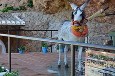 burro-taxi en Mijas