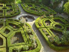 Il labirinto di piante più lungo del mondo?