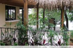 $1,750 A Week, Special Offer - Stay 7 Days/Pay for 5. Dominical, Costa Rica  VillaMiama.com / keithrizzi@me.com