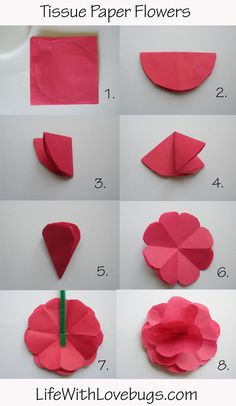 tissue papper carnation flowers | Tissue Paper Flowers - Life With Lovebugs