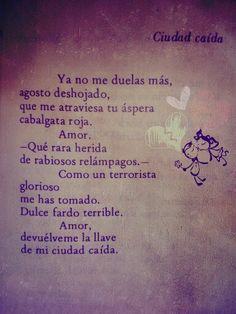 Ciudad Caída, Ana Istarú. Poesía Costarricense.