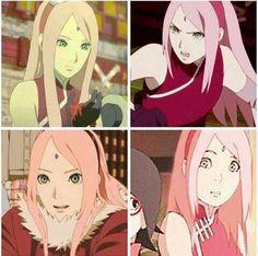 Sakura The last. Long Hair