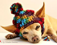 Dog hat crocheted Variegated Dark Teal and Winter by ShaggyChic