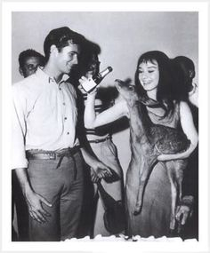 Audrey Hepburn plays games with a fawn. Source: Live Journal