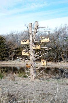 A directional sign east of Grand Island along the Lincoln Highway. Lincoln Highway, Grand Island, Directional Signs, Nebraska, History, Building, Plants, Ideas, Historia