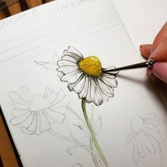 drawings of a girl Flower Drawing Tutorials, Flower Sketches, Art Tutorials, Art Sketches, Art Drawings, Drawings Of Flowers, Draw Flowers, Pencil Drawings, Paper Flowers