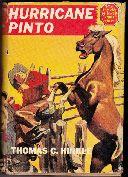 Hurricane Pinto by Thomas C. Hinkle