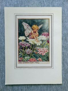 This beautifull Candytuft Flower Fairy Vintage Print by Cicely Mary Barker was printed c.1950 and is an original book plate from and early Flower Fairy book. This is an original page (book plate) from the vintage book and not a modern copy or reproduction. This print is guaranteed to