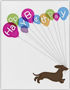 22 Best Happy Birthday Dachshund Images In 2019