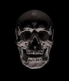 Skull Skeleton Bones, Skull And Bones, Airbrush Skull, Crane, Skull Reference, Gcse Art Sketchbook, Skull Artwork, Skull Island, Skull Art