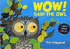 Another Owl book, this one focuses on colors.