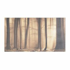 Morning Mist Canvas Art Print | Kirkland's