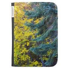 Autumn 10 kindle cover by Florals by Fred #zazzle #gift #photogift
