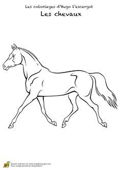 Coloriage pour enfants, portrait d'un cheval au pas