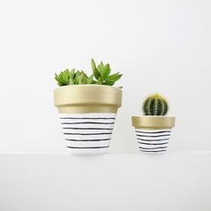Gold Stripe Plant Pot - 6cm