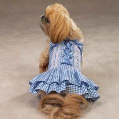 Gingham Dog Dress I have one in red and one in blue as pictured.