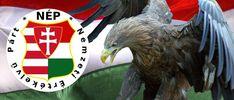 Magyar vagy? Tenni akarsz a hazádért Magyarországért? Lépj be közénk, csatlakozz az egyetlen magyar alapítású párthoz! Parrot, Lion Sculpture, Statue, Bird, Animals, Parrot Bird, Animales, Animaux, Birds