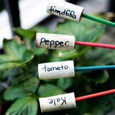 Don't let plastic plant tags ruin your outdoor decor. Make these garden markers using wine corks and chopsticks. Chic and eco-friendly.