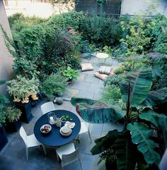 Longing for instant green, a Brooklyn couple joins forces with a gifted garden designer to create a speedy city oasis.