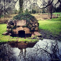 St Colmcille's holy well, Durrow, Co Offaly. Set in a wooded glen, its sacred waters are believed to have curative powers