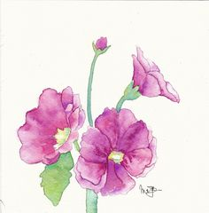 hollyhock watercolour painting - Google Search