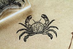 Crab Rubber Stamp 1.5 x 2.25  Crab Stamp  Ocean by RedClayStamps