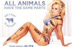 Pamela Anderson lo PETA ⋆ Luna Dominante