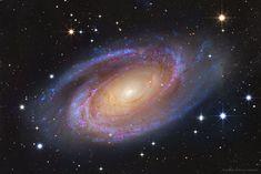 Bright Spiral Galaxy M81