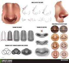 Nose Tutorial Resource by ConceptCookie.deviantart.com on @deviantART