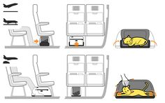 Worrying about buying a carrier that will not fit under a plane seat is a thing of the past. Our patent pending folding system allows pets to travel in the largest space possible while the airplane is in the air, yet still allows for stowage under an airline seat during takeoff and landing.