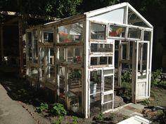 old window greenhouse at Homebase in Berlin
