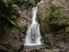 La Mina Waterfall, El Yunque Rainforest, Puerto Rico. My family and I went on this trip during January 2009.