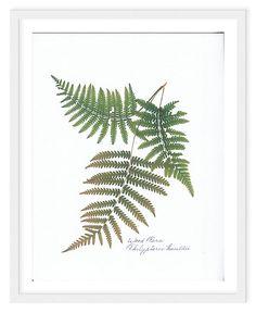 One Kings Lane - Graphic Appeal - Flat Flower, Wood Fern II