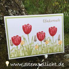 Stempellicht: Blumenwiese mit Tranquil Tulips