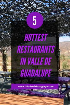 5 restaurants in valle de guadalupe that you shouldn't miss! Family Vacation Destinations, Vacation Trips, Travel Destinations, Vacation Ideas, Beautiful Places To Travel, Best Places To Travel, Amazing Places, Travel Ideas, Travel Tips
