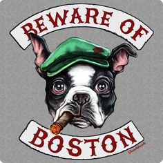 Bostonians can be as cute and nice as puppies but when it comes to sports: beware! This awesome design features a Boston Terrier that couldn't be...well, more Boston! Complete with a Scally Cap and cigar, this guy means business! Whether you still live in Beantown or have since moved, this t-shirt is sure to be an instant favorite - order one today! Also available in a hoodie! http://www.chowdaheadz.com/beware-of-boston.html