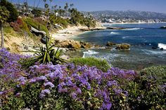 Laguna Beach Coast <3
