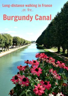 What to expect on a long-distance walk – from Migennes to Pouilly-en-Auxois along the Burgundy Canal in France.