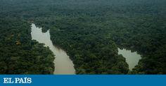O governo Temer e a bancada ruralista do Congresso estão empenhados em transformar a maior floresta tropical do mundo em propriedade privada de poucos
