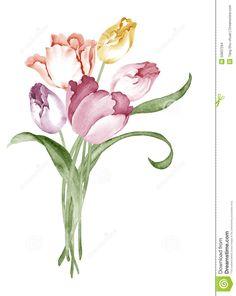 watercolor-illustration-flower-set-simple-white-background-50837294.jpg (1035×1300)
