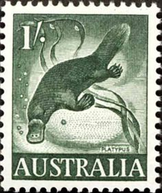Eileen Mayo designed this platypus for the one-shilling stamp, and in 1962 she was awarded the Vizard-Wholohan Prize for prints.