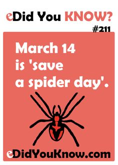 March 14 is 'save a spider day'. http://edidyouknow.com/did-you-know-211/
