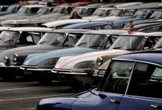 Citroën DS parking only. Citroen Ds, Fancy Cars, All Cars, Amazing Cars, Cool Photos, Classic Cars, Automobile, Bike, Park