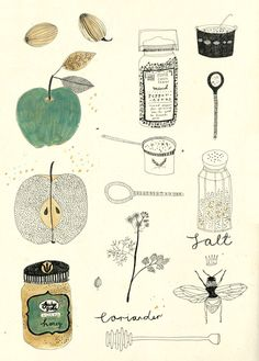 Anthology Magazine | Artwork | Illustrations by Katt Frank