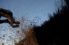 Kicking up the birch as they launch over the steeplechase fence. #Nationalhunt #Racing